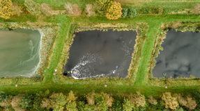 Plant for fish farming, taken vertically from the air royalty free stock photos