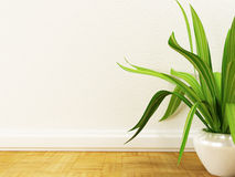 A plant on the floor, Stock Images