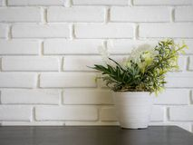 Plant and flower mock-up in white flowerpot. Front view of plant and flower mock-up in white flowerpot on wooden desk in front of white brick wall texture stock images