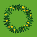 Plant flower wreath border frame decoration on green. Potentilla anserina green yellow plant leaf flower wreath border frame decoration wedding on green Vector Illustration