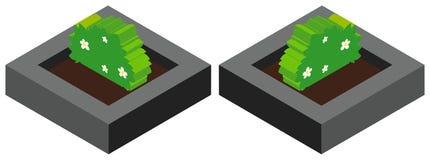 Plant in flowerpot in 3D Stock Photo