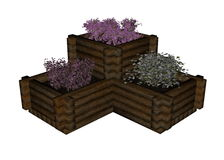 Plant and flowers in boxes - 3D render Stock Photography