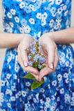 Plant with flowers in girl hands. Ecology the cultivation of plants, the protection of the environment. Clean air, preservation. Plant with flowers in girl hands Stock Image