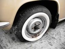 plant gammalt gummihjul för bil Arkivbilder