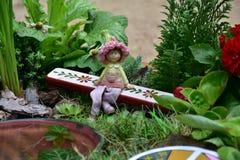 Plant, Garden, Leaf, Grass royalty free stock photo