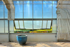 Plant glass house with water lily basin and garden view stock photo