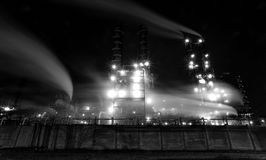 The plant glows at night, black and white,long exposure. The plant glows at night in city , black and white,long exposure Royalty Free Stock Photo