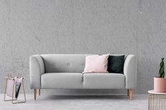 Plant on gold table in simple living room interior with grey sofa with pillows and newspaper. Real photo.  royalty free stock image