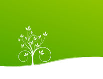 Plant on green background. Elegant plant on green background Royalty Free Stock Image