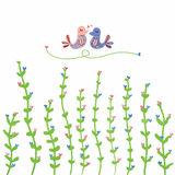 Plant grow love bird decor. Illustration painting love plant grow love bird decor white color background Royalty Free Stock Photography
