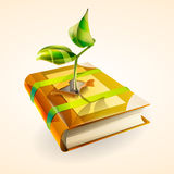 Plant growing in book. Royalty Free Stock Image