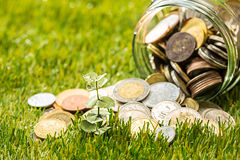 Plant growing in Coins glass jar for money on green grass Stock Photo