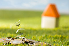 Plant growing in Coins glass jar for money on green grass Royalty Free Stock Images