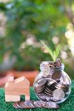 Plant growing from coins in glass jar. Wooden house model on artificial grass. Home mortgage and property investment concept. Copy space royalty free stock photography