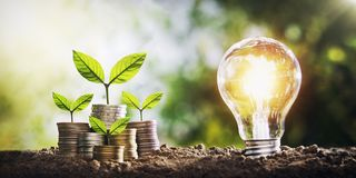 Plant growing on coins and light bulb. concept saving money. With energy royalty free stock images