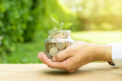 Plant growing from money coins in the glass jar Royalty Free Stock Photos