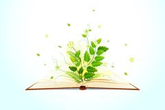 Plant growing on Open Book Stock Photography