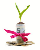 Plant growing out of money roll. Isolated on white Royalty Free Stock Photo