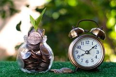 Plant growing from pile of coins with vintage clock beside. Time is money. Savings and investment concept. Copy space. Save rich finance business cash currency royalty free stock photo