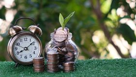 Plant growing from pile of coins with vintage clock beside. Time is money. Savings and investment concept. Copy space royalty free stock image