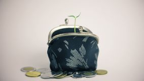 Plant growing from wallet, pile of coins, money business finance growth concept, isolated on white stock footage