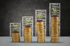 Plant growing up on the money coins. Plants growing up on the golden money coins with business graph background Stock Photo