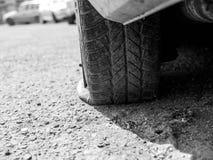 Plant gummihjul på att parkera bilen, grunt djup av fältet, kopieringsutrymme arkivfoto