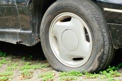 Plant gummihjul på bilhjulet Arkivbilder