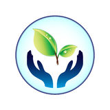 Plant and hands. Symbol of plant and hands Royalty Free Stock Image