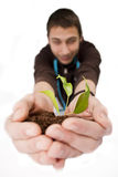 Plant in hands. A person holding a small plant in hands Royalty Free Illustration