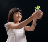 Plant in hands of a little girl. Against black back ground Stock Images
