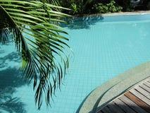 Plant het blauwe water van de pool Stock Foto