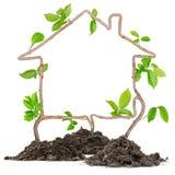 Plant house Royalty Free Stock Photo