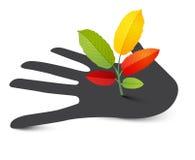 Plant on Human Hand. Stock Photography