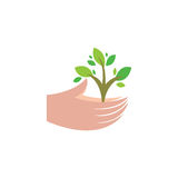Plant in human hands Royalty Free Stock Photography
