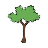 Plant icon image. Bush plant icon image vector illustration design royalty free illustration