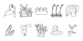 Plant icon set, outline style. Plant icon set. Outline set of plant vector icons for web design isolated on white background Stock Images