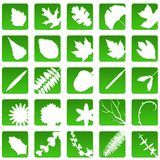 Plant icons Stock Photography