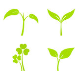 Plant icons Royalty Free Stock Photos
