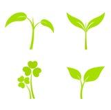 Plant icons Royalty Free Stock Photos