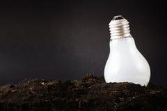 Plant Idea Stock Image