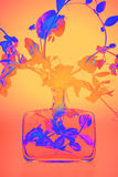Plant In Infrared Light Royalty Free Stock Photos