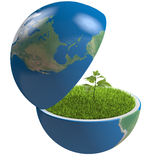 Plant inside planet Stock Images