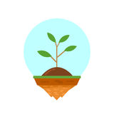 Plant on island Stock Photography