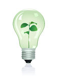 Plant in lamp. Vector illustration Stock Images