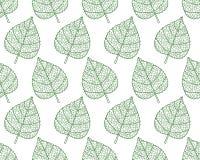 Plant leaf contour pattern Stock Images