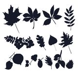 Leaves silhouettes vector isolated on white background. royalty free illustration