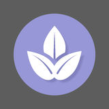 Plant leaves flat icon. Round colorful button, Spa circular vector sign with shadow effect. Flat style design. Stock Image