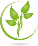 Plant, leaves in green, naturopath and nature logo Stock Photos
