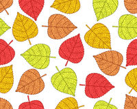 Plant leaves pattern Stock Images